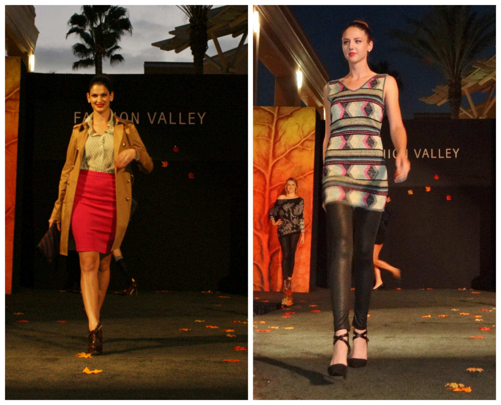 Fashion in the Valley Collage 3