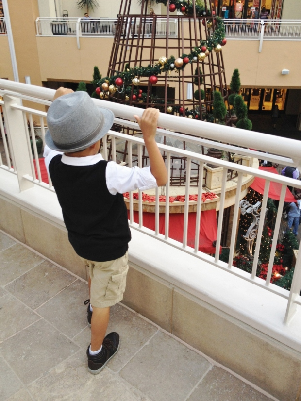 Fashion Valley Mall Santa Appointment